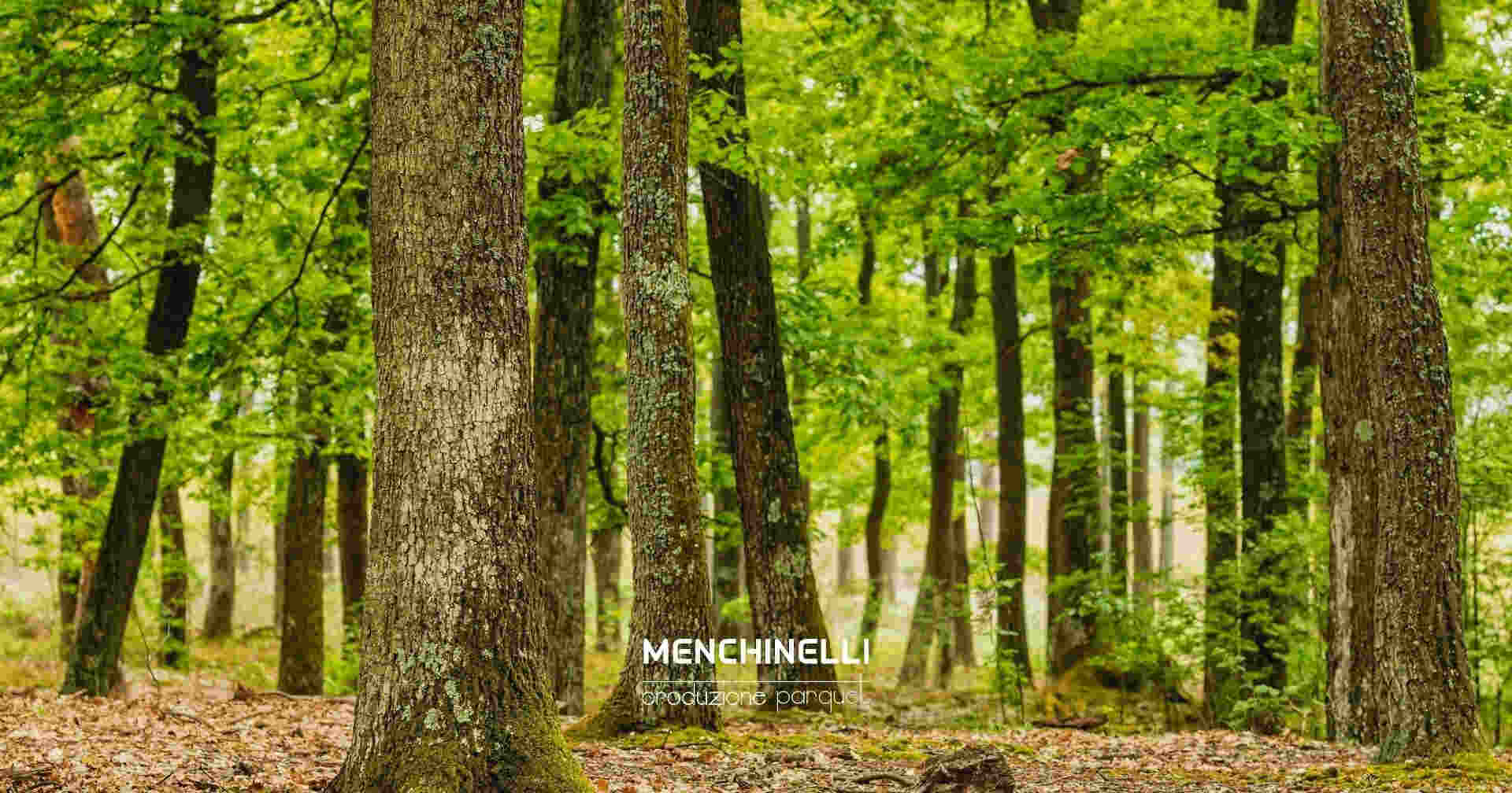 legno per la realizzazione del pavimento sostenibile